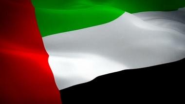 Powerful Families in UAE - Flag